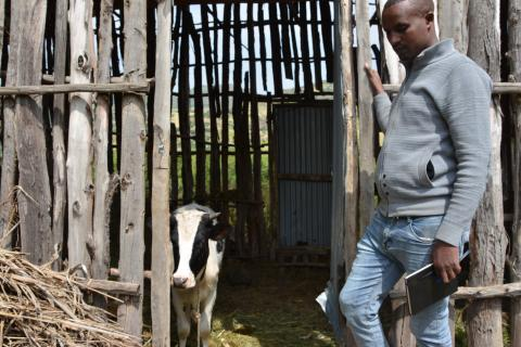 GuG Focal Person for Ebinat showing livestock used for increased milk production
